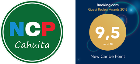 New Caribe Point Booking Award